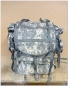 Preview: original U.S. Army Rucksack LARGE Molle II SET mit Fraime, Sustainment-Taschen (ACU) UCP Tarn