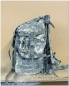 Mobile Preview: original U.S. Army Rucksack LARGE Molle II SET mit Fraime, Sustainment-Taschen (ACU) UCP Tarn